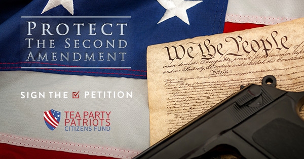 Protect the Second Amendment